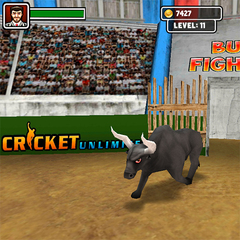 Touch bull fighter 2